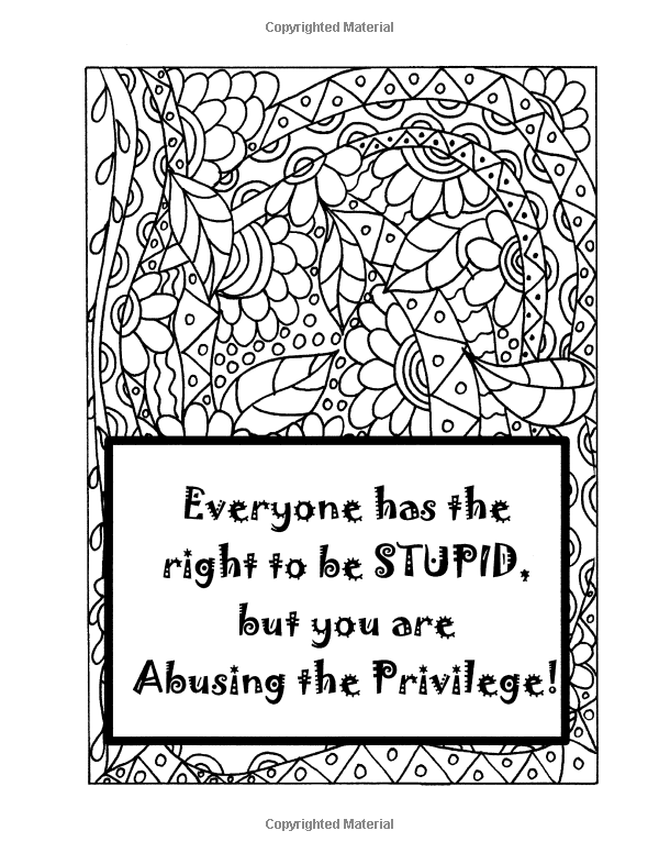 Amazon Adult Coloring Book And Journal Simply Sarcastic Quotes RelaxingInspired