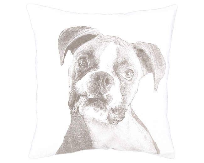 Boxer Decorative Pillow