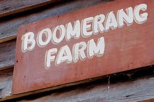 Get Hitched at the Boomerang Farm.