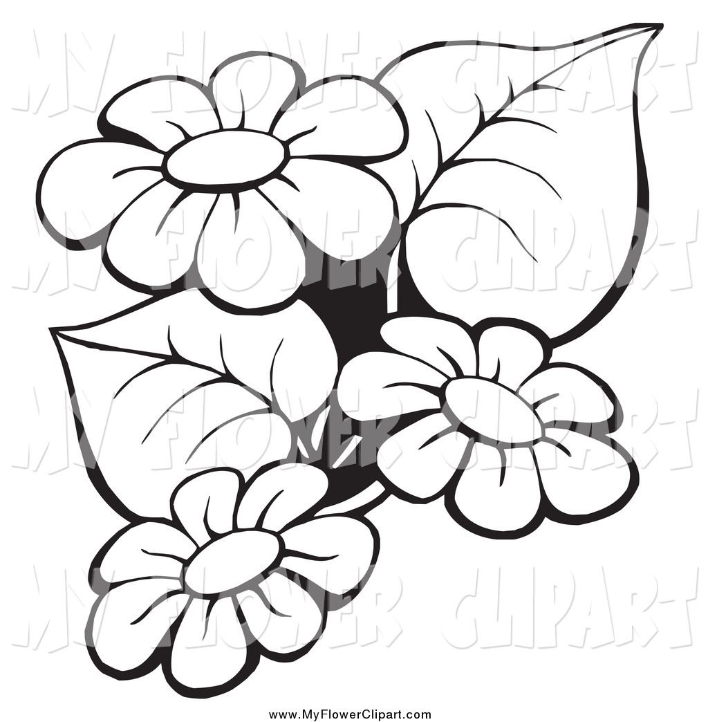 Flowers Clip Art Border Black And WhiteImage Gallery
