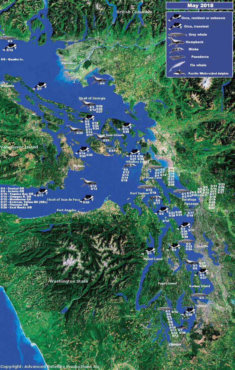 Orca Network s Sighting Network Map Orcas Pinterest