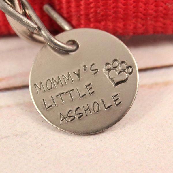22 Finest Dog Tag Holders For Collars Dog Tag Gifts For Men