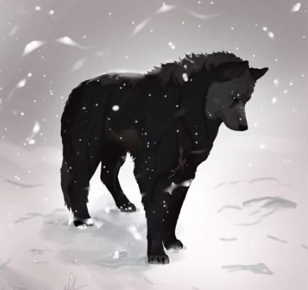 schwarzer Wolf im Schneegestöber