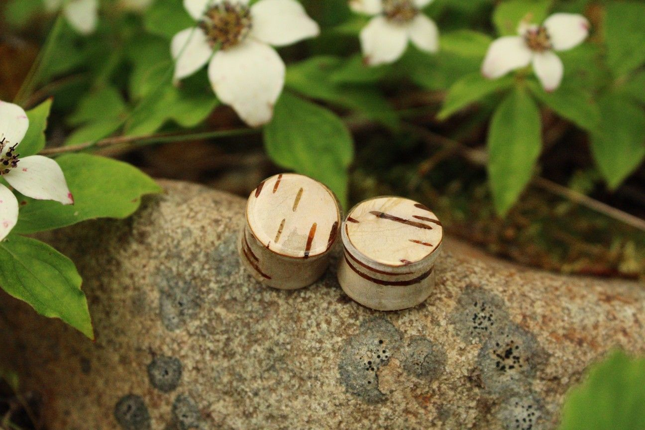 Stretcher Tunnel Real Wooden Woodland Forest Fairy Jewellery Down to Earth Rocky Mountain Explore Paper Birch Bark Double Flare Ear Plugs