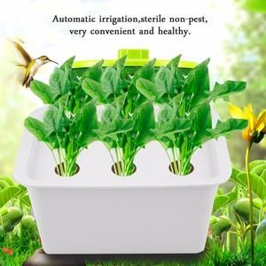 6 Hole Hydroponic System Indoor Garden Cabinet Grow your herbs and spices hydroponically.