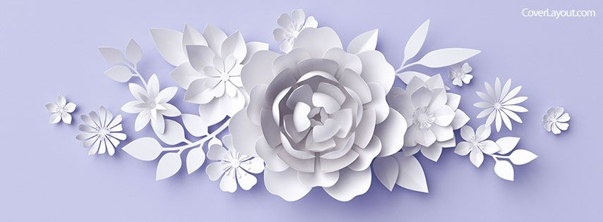 White Flowers Purple Background Facebook Cover Coverlayout