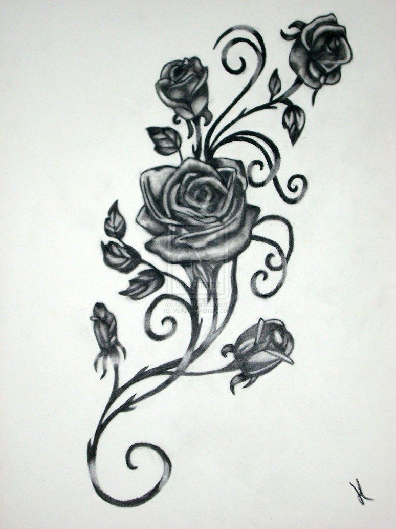 Vine and roses by vaikin tattoos pinterest tattoos rose