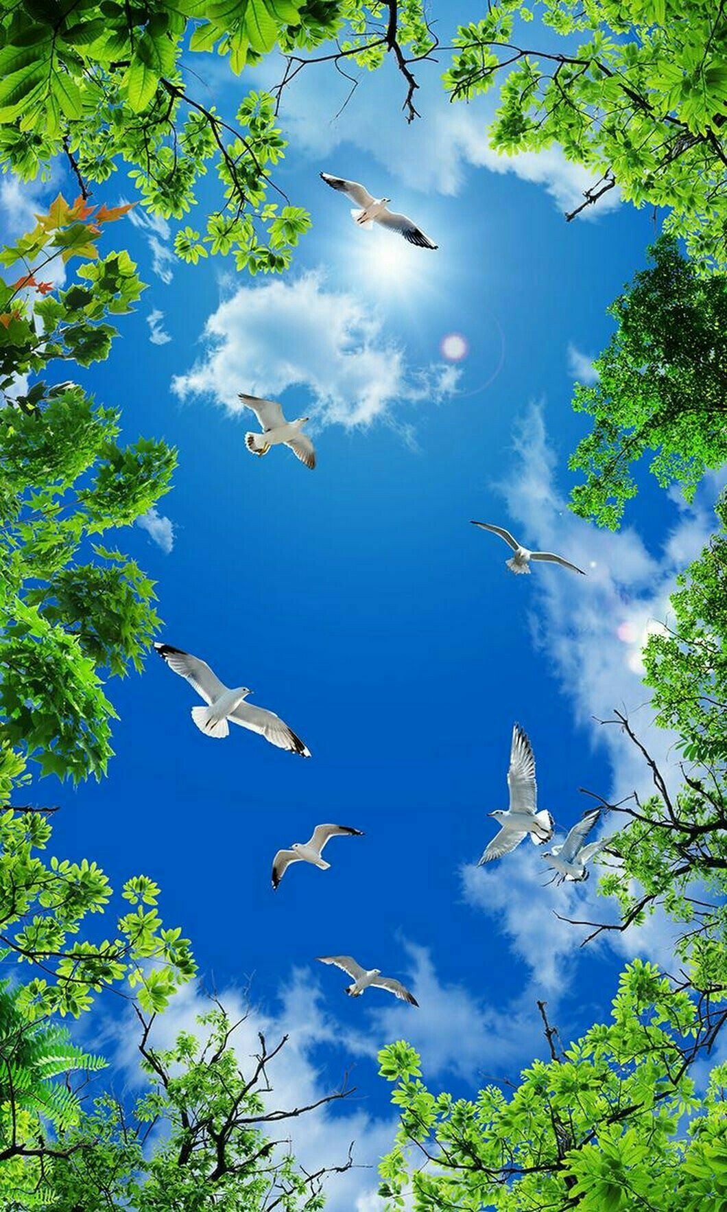 Its My Favrt I Love Flying Birds Beautiful Nature Beautiful Nature Wallpaper Beautiful Landscapes