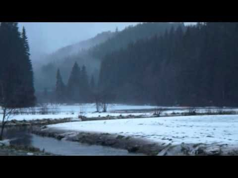 """Taake - """"Nordbundet"""" Official Video - YouTube"""
