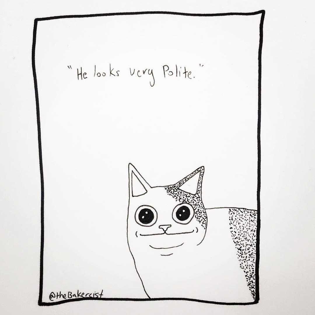 He Looks Very Polite Cat Cats Catmeme Meme Memes Drawing Stuffidraw Myart Catsofinstagram Catmemes Poli Cat Doodle Cat Art Print Funny Looking Cats