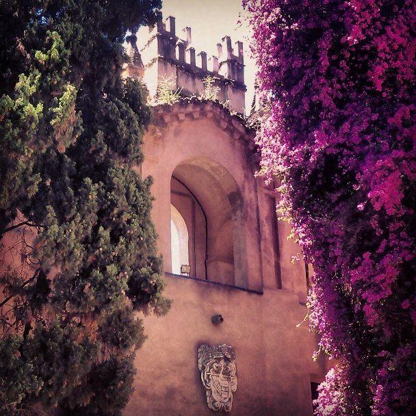 Gardens at the Alcázar de Sevilla, Seville, Spain