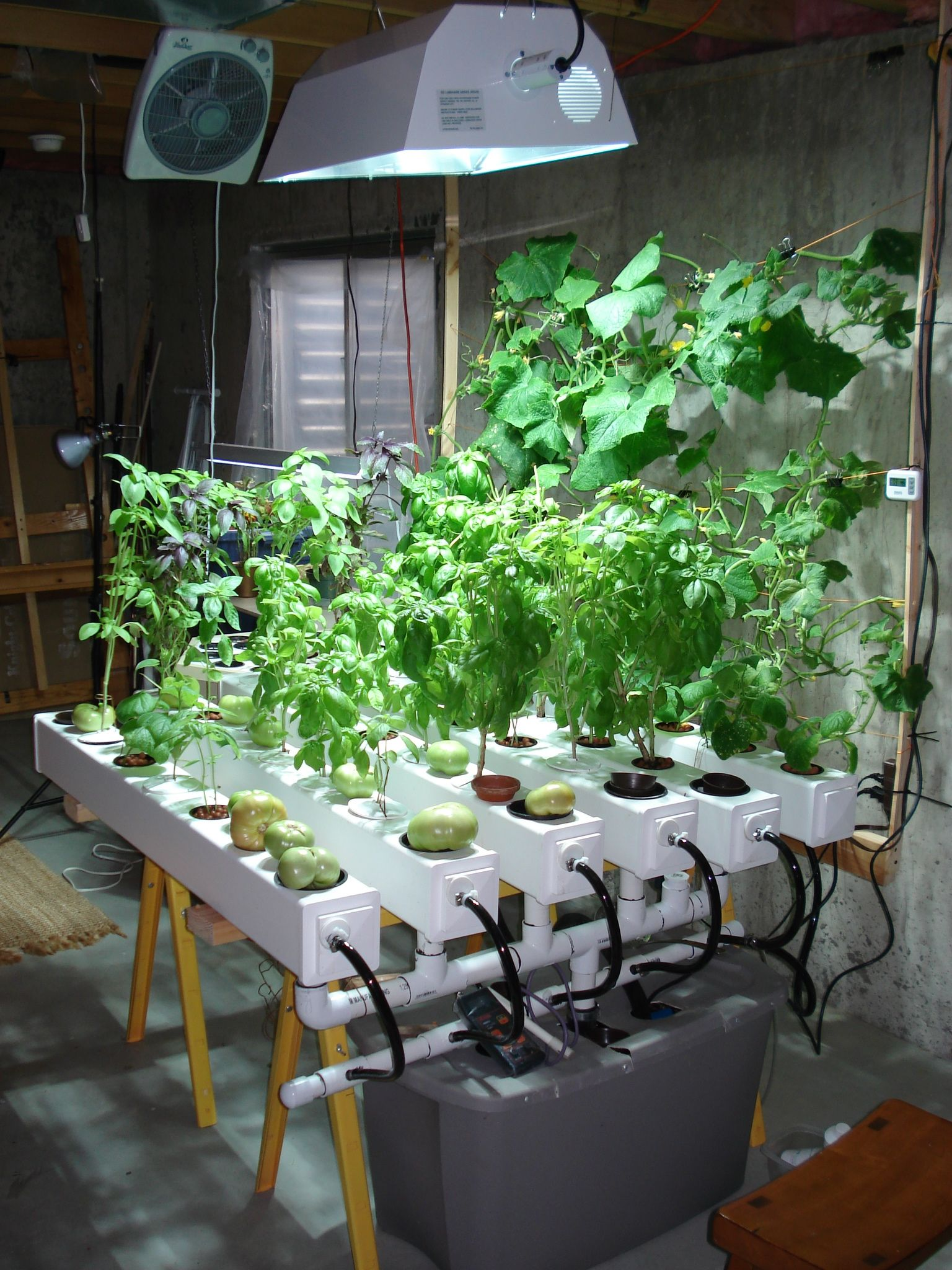 indoor hydroponic garden under hid metal halide plant grow