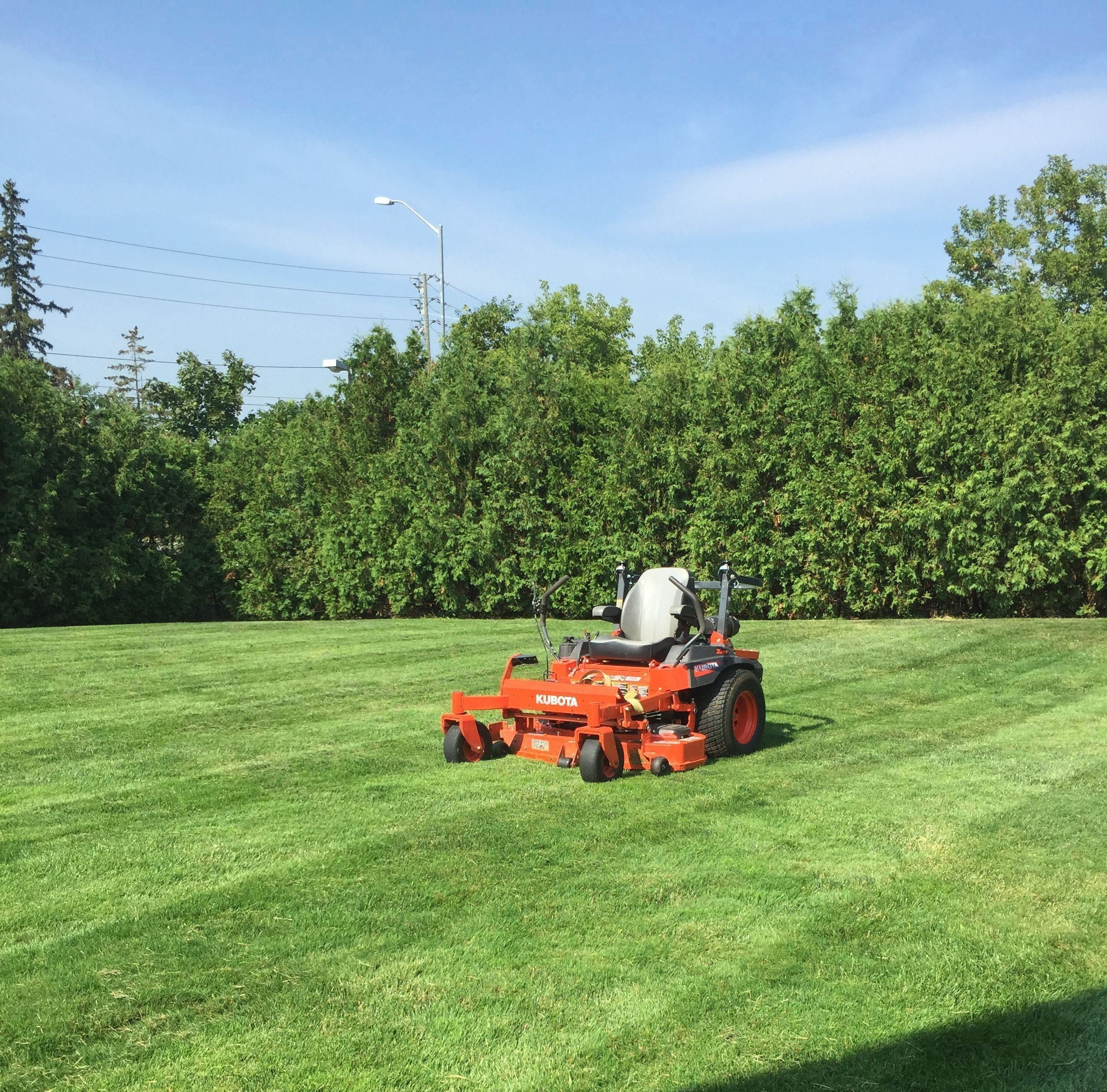 Common Mistakes Made In Lawn Care Landscaping near me
