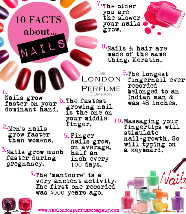 Hair Studio Facts About Menu Nail Ideas Polish Tips Hello Kitty Barber Salon Art