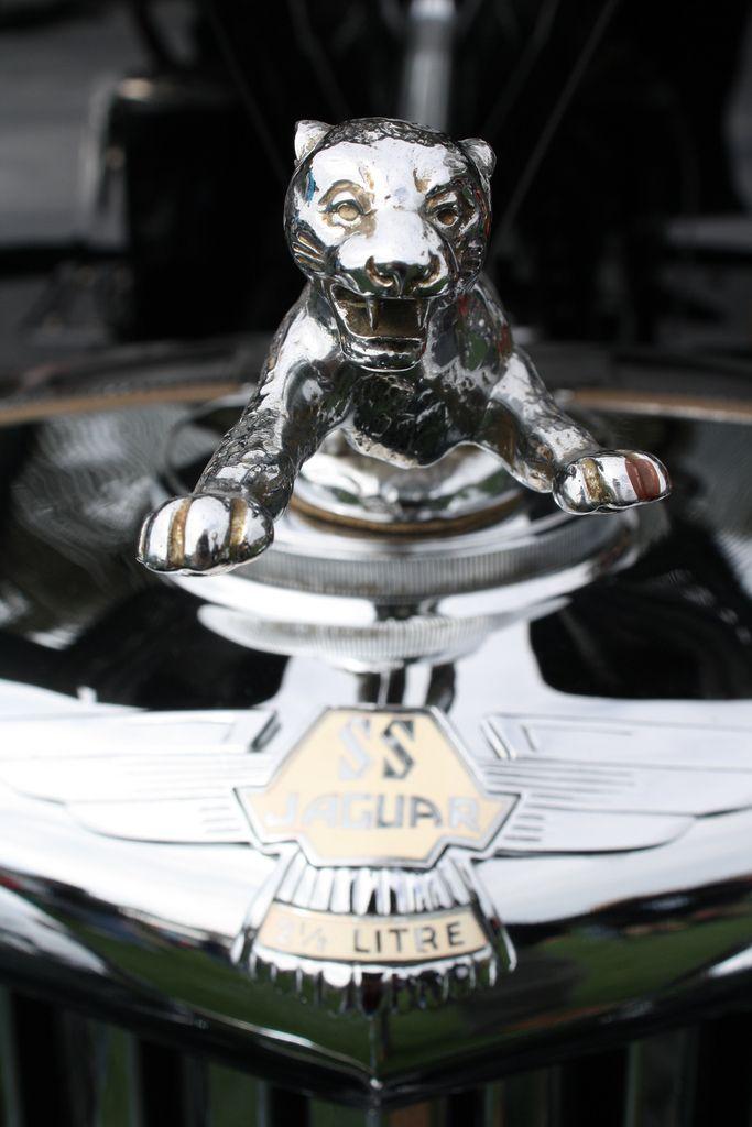 Putty Cat Hood Ornaments Jaguar Hood Ornament Car Hood Ornaments
