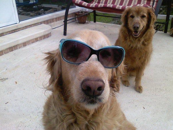 loving her shades