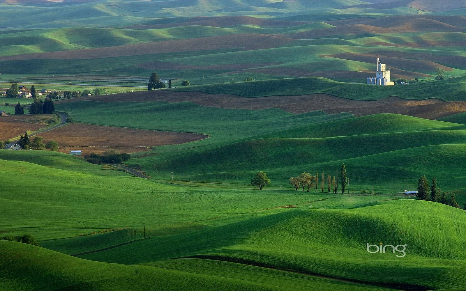Bing Wallpaper Collection Green Plains Wallpaper The Wallpaper Database Palouse Golf Course Photography Landscape