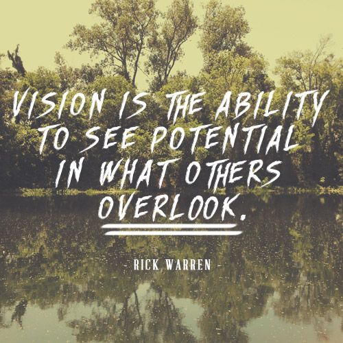 Quotes About Vision Vision Is The Ability To See Potential In What Others Overlook .