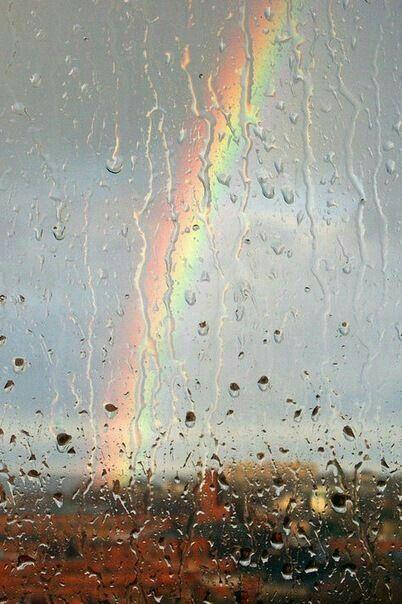 El color de la esperanza, ,,,