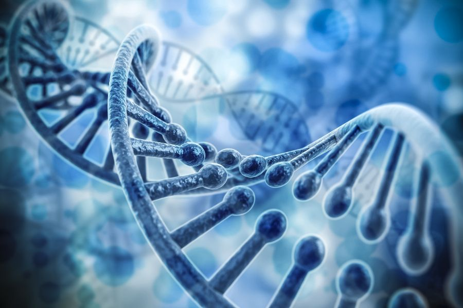 Mandatory Labels On Foods Containing Dna 80 Of Americans Support