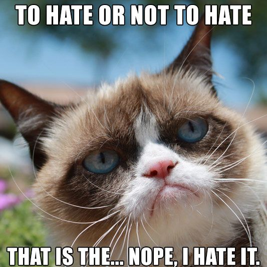 To hate or not to hate. That is the... Nope, I hate it ... Loathe Cat