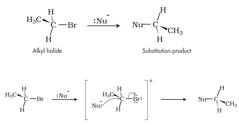 Organic Chemistry Reaction Mechanisms for the MCAT  -  Reactions of Alkyl Halides  -  SN2 Mechanism with Alkyl Halides