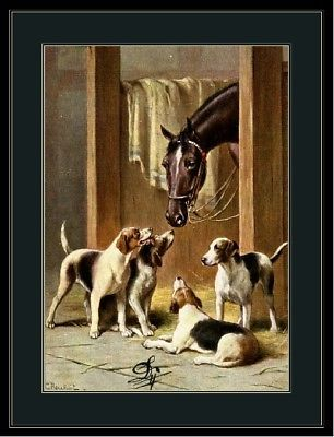 English Print Fox Hound Terrier Puppy Dog Dogs Horses Horse Art