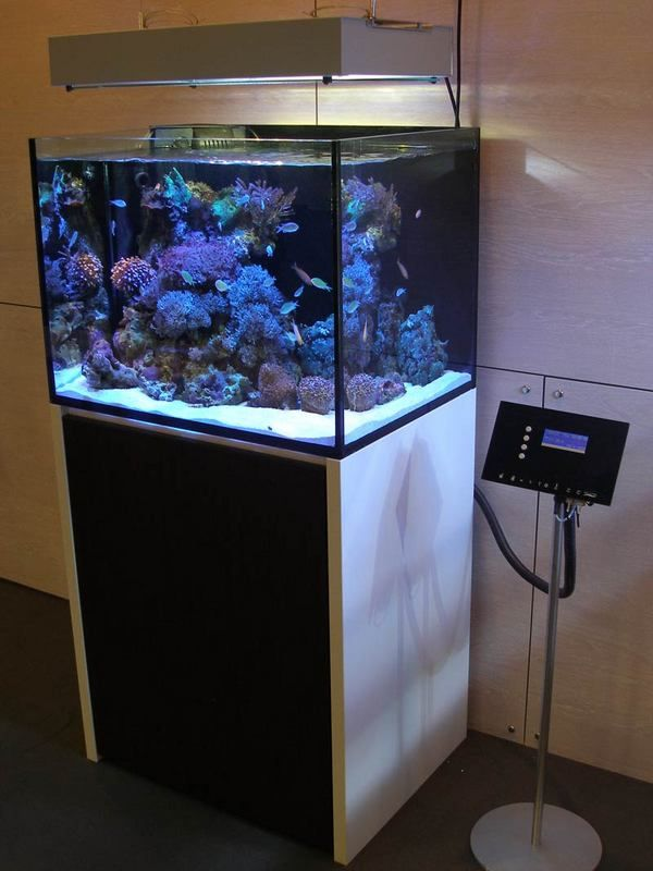 Reef Builder Archives Modern Aquarium Design For Reef