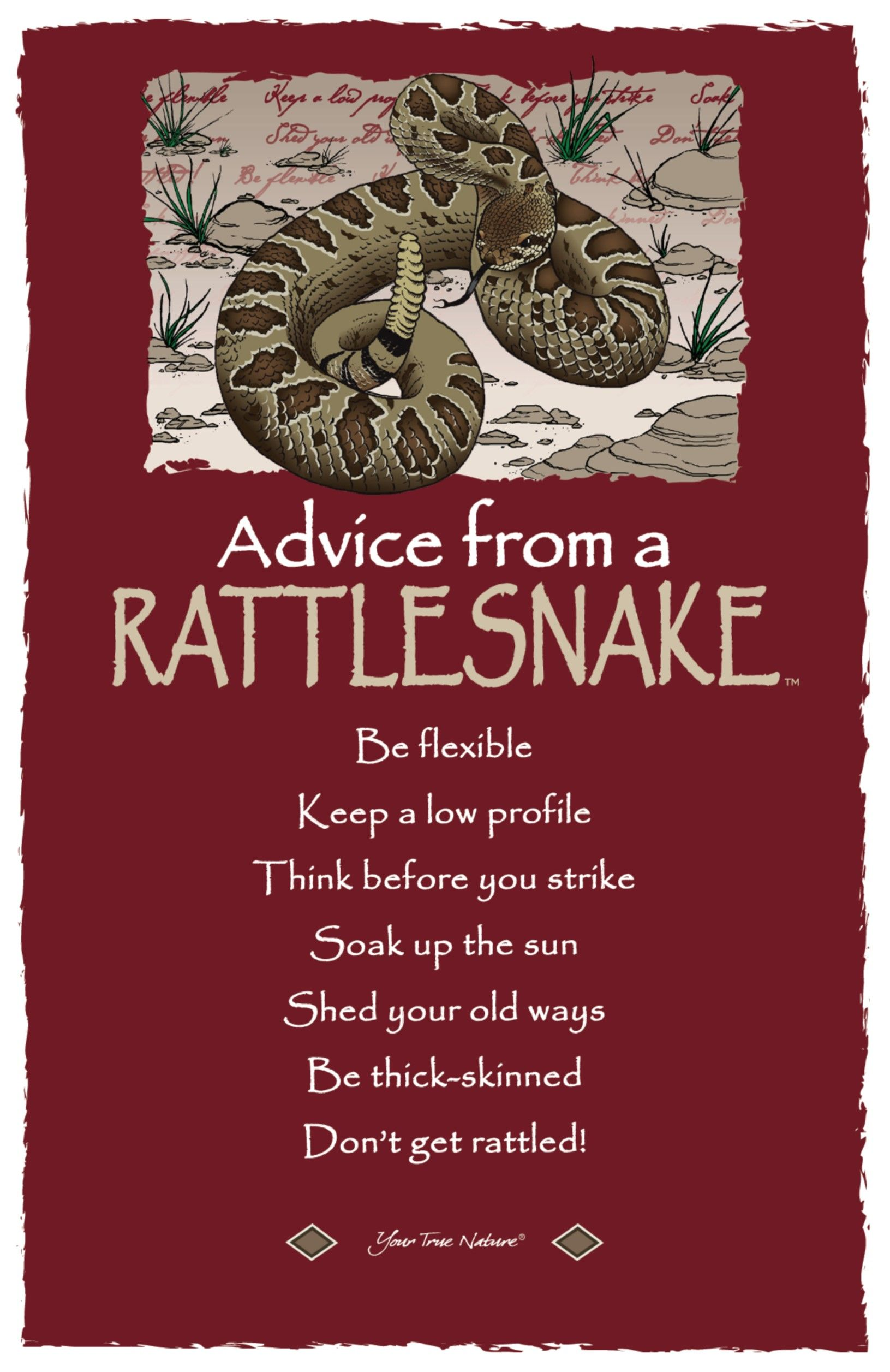 Advice from a Rattlesnake