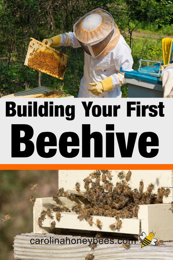 How to Build a Beehive of Your Own | Bee keeping, Backyard ...