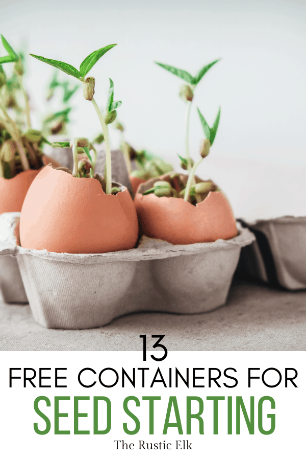 Photo of 13 Free DIY Seed Starting Containers