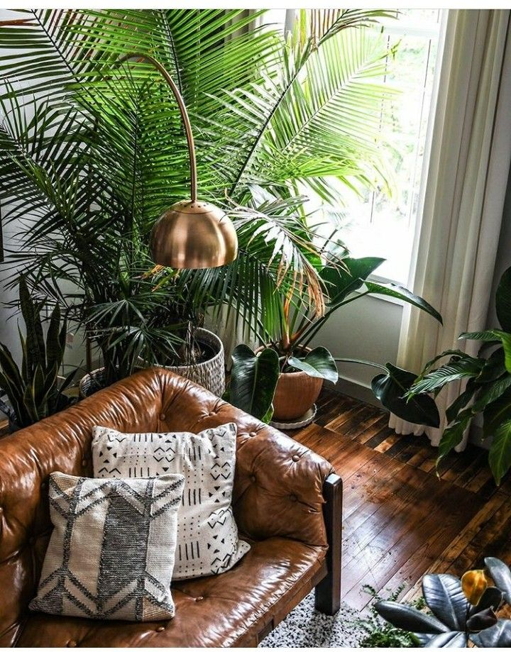 Pin by @shleyB on Eclectic Jungle Inspiration   Living ...