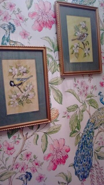 Peacock wallpaper in bathroom with vintage bird pictures