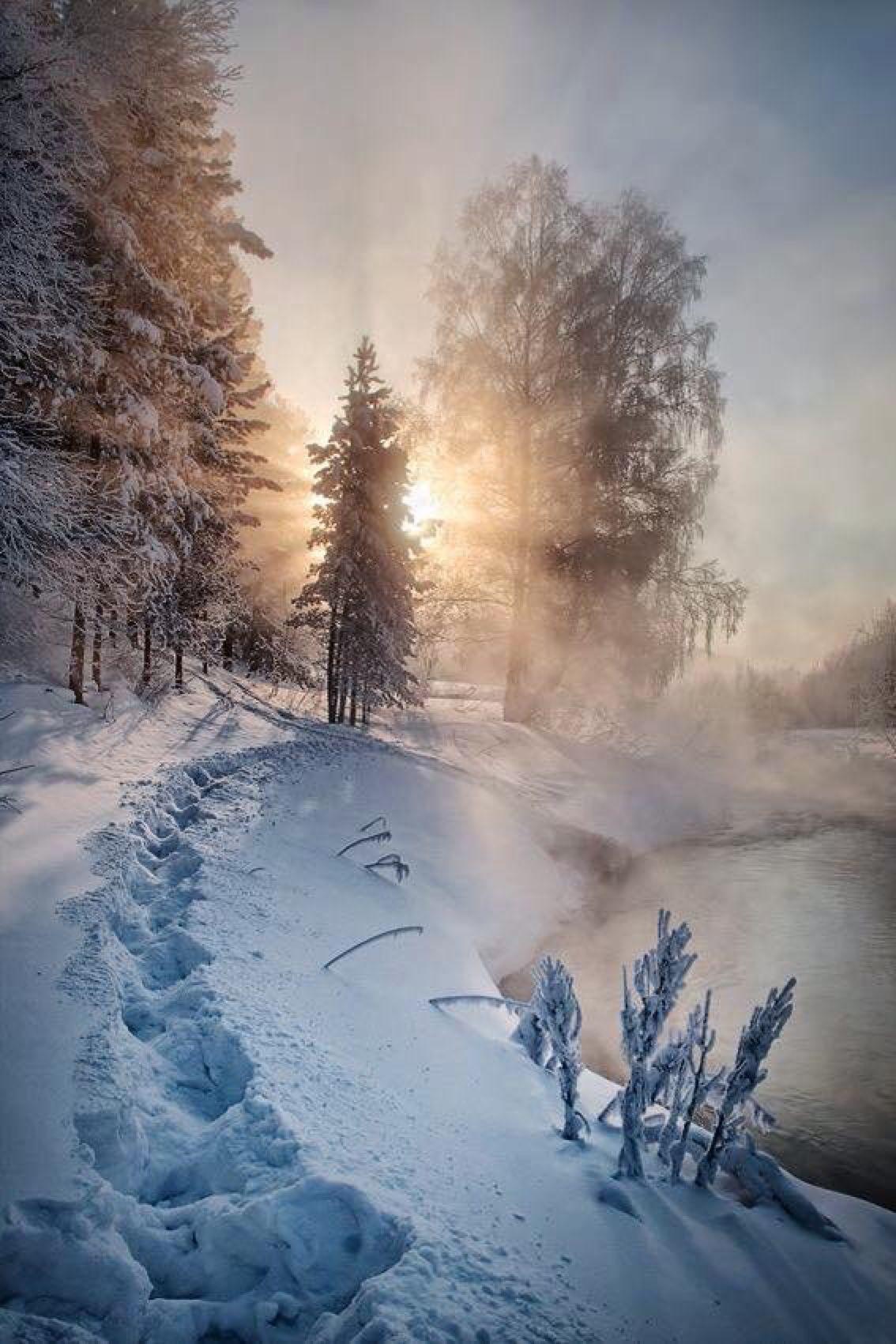 Winter, Schnee, Plätzchen und Weihnachten ist bald in Sicht. Was will man mehr in der kalten Winterzeit?