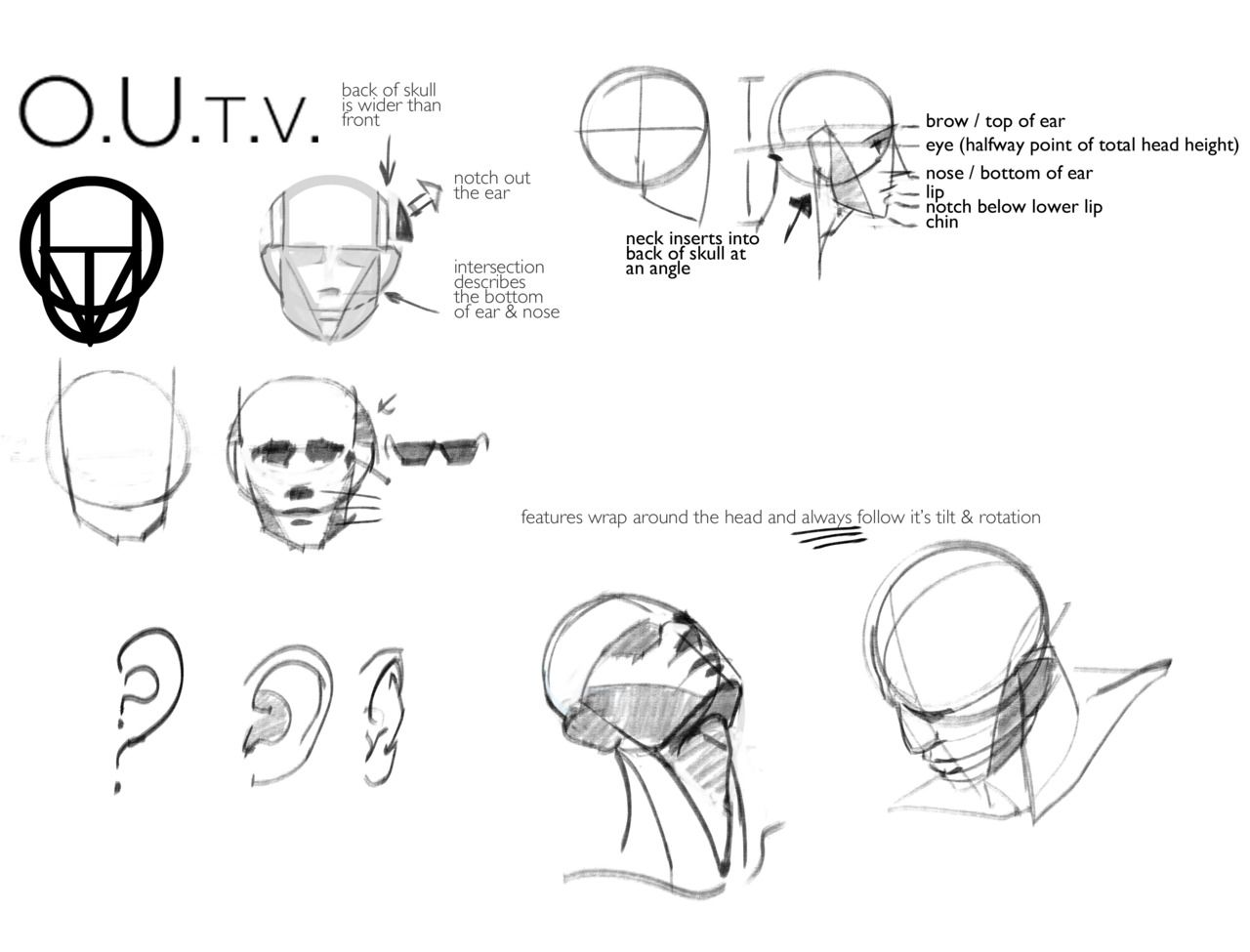 17 Best Images About Drawing Heads & Faces On Pinterest The Head, Anatomy  And Head