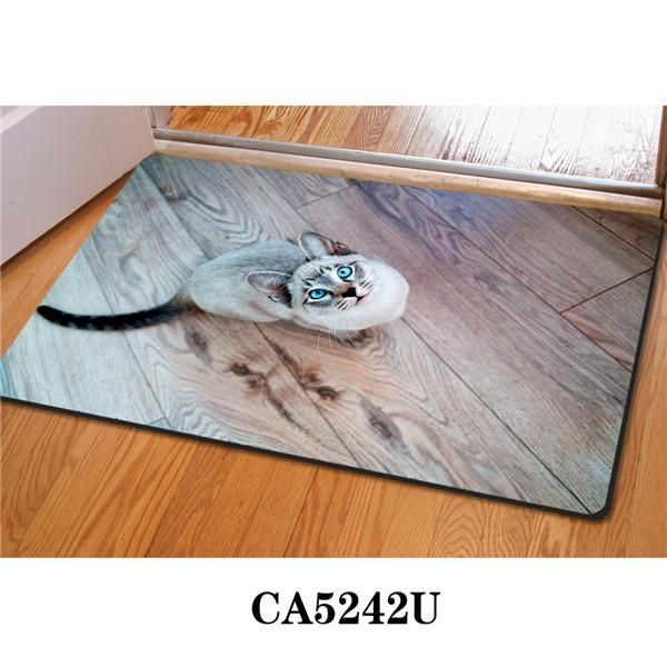 Beautiful Entry Mats for Hardwood Floors