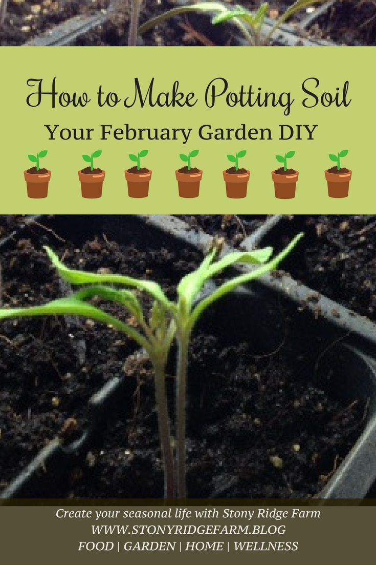 Potting Soil Garden How to make potting soil potting soil gardens and seed starting workwithnaturefo