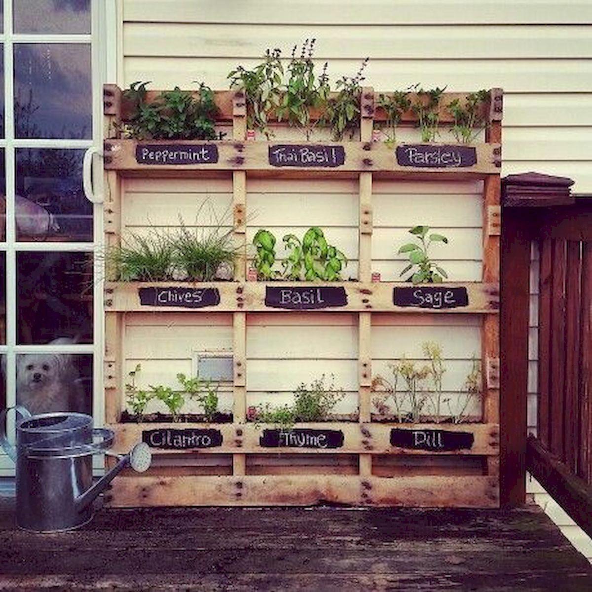 Gardening Tips For Autumn #GardeningLogo Product ID