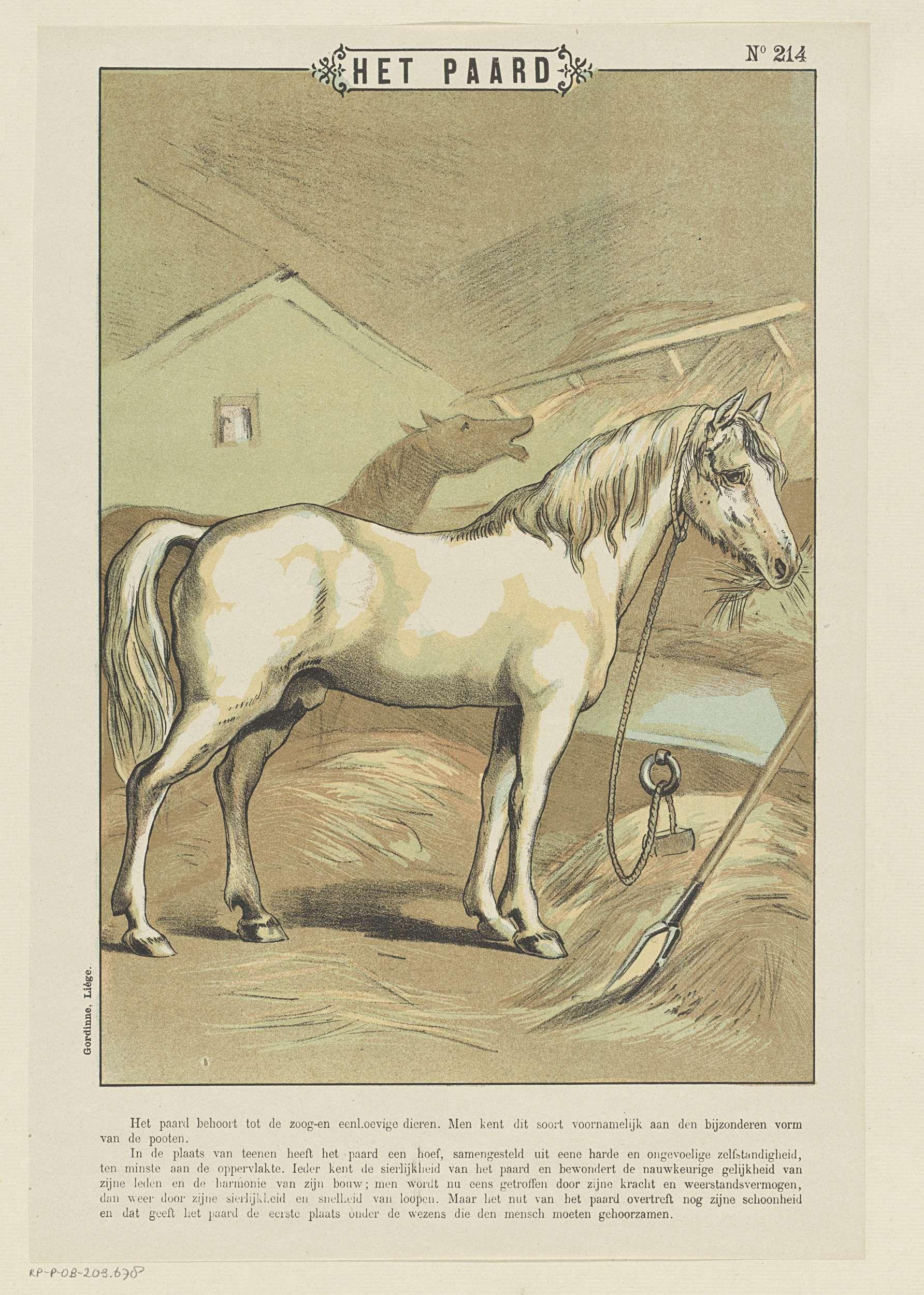 Gordinne | Het paard, Gordinne, Anonymous, 1894 - 1959 | Blad met een grote voorstelling van twee paarden in een stal. In de ondermarge een onderschrift. Genummerd rechtsboven: No 214.