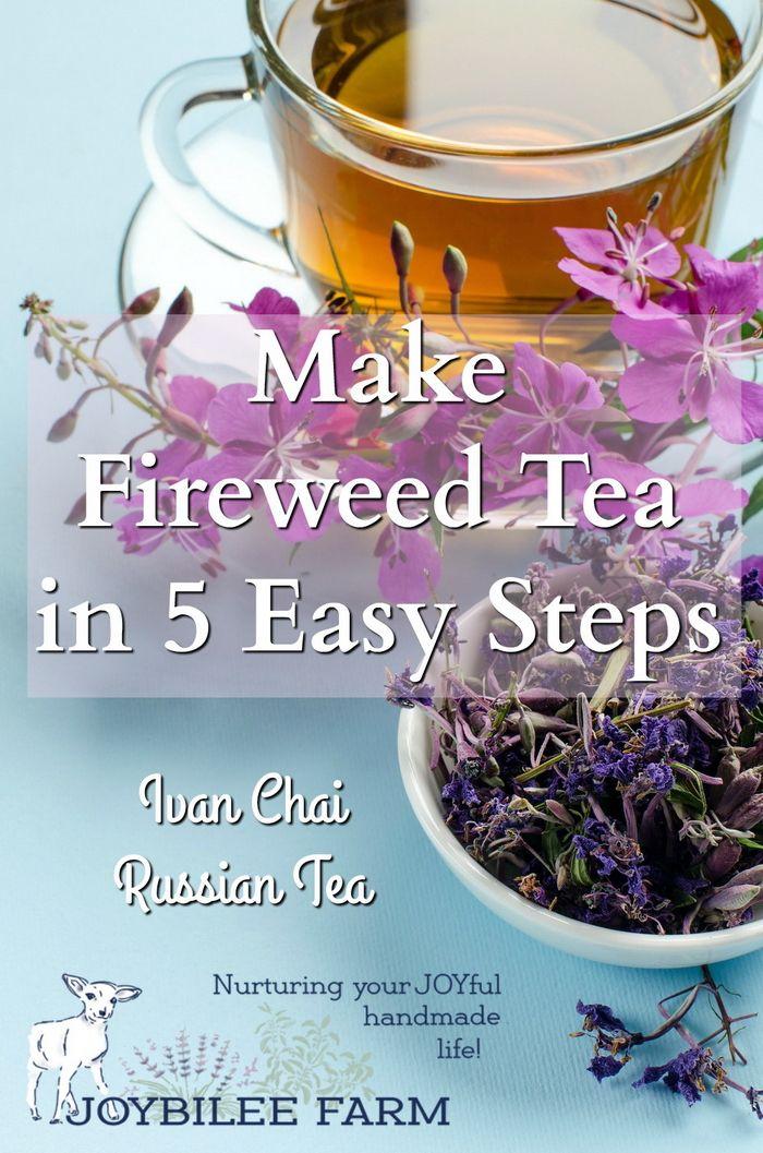 Ivan tea recept a prosztatitisből