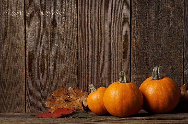 13 Thanksgiving Wallpapers For Your Computer Tablet And Phone Thanksgiving Wallpaper Free Thanksgiving Wallpaper Thanksgiving Background Best of free thanksgiving wallpaper for