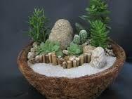 mini gardeniers de cactus y suculentas - Buscar con Google
