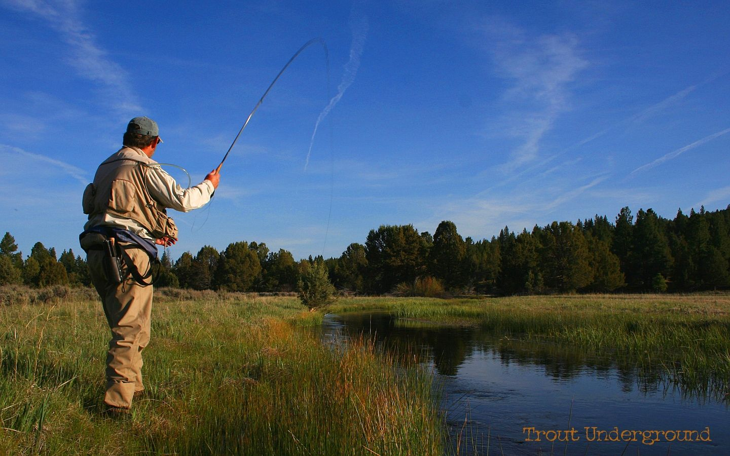 Trout Fishing Wallpaper Fly Picture Painting