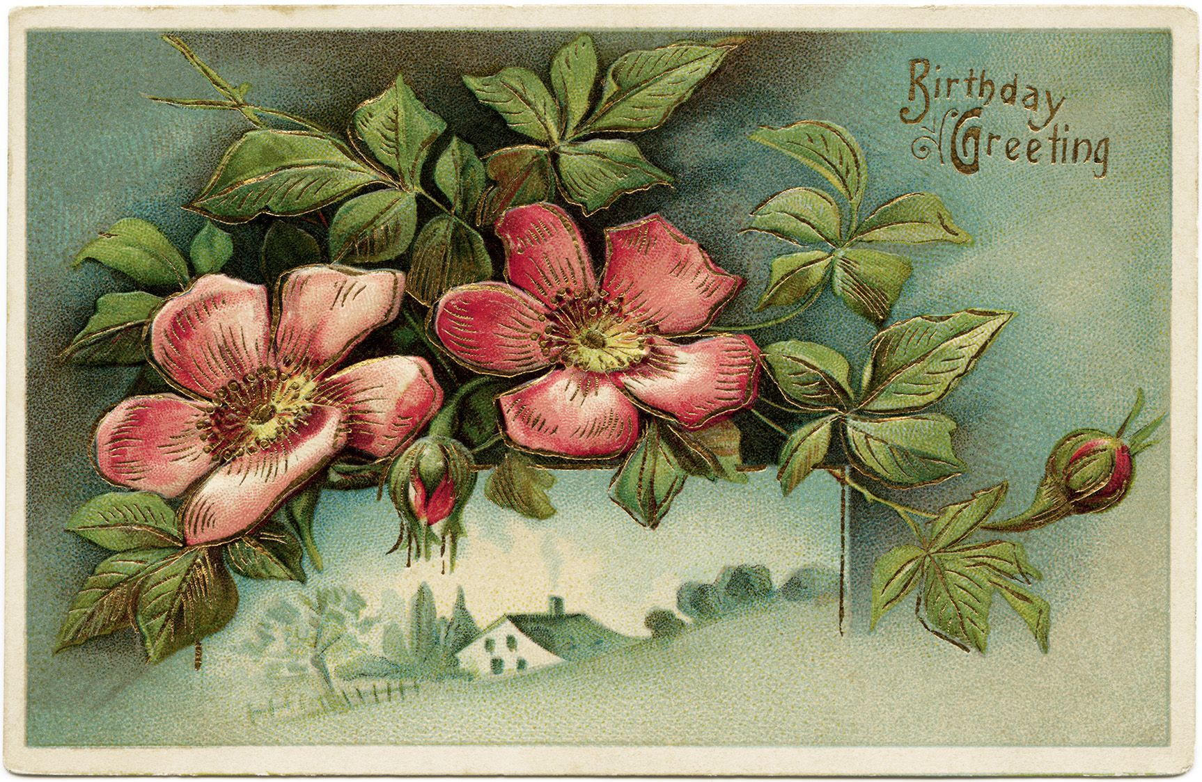 Victorian Postcard Graphics Vintage Birthday Postcard Wild Rose