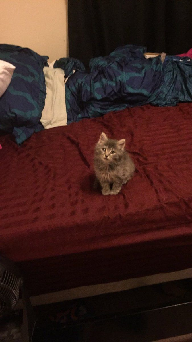 Photo sent by @taylee1213