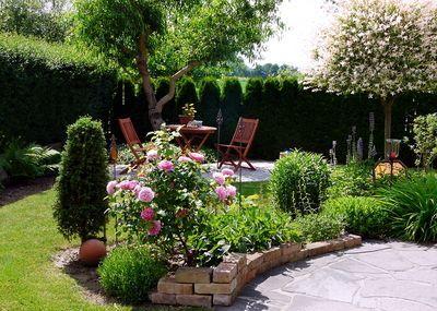Gestern bei mir im Garten .-) #backyardmakeover