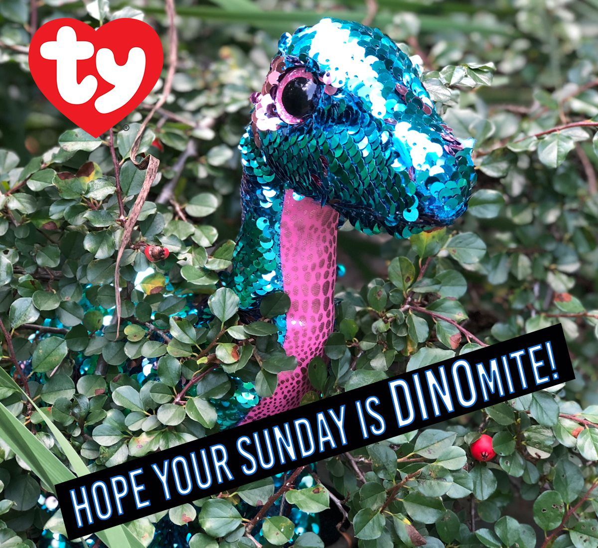 6135b6e28a4 Tremor the dinosaur. Ty flippables color-changing sequin Beanie Boos ...