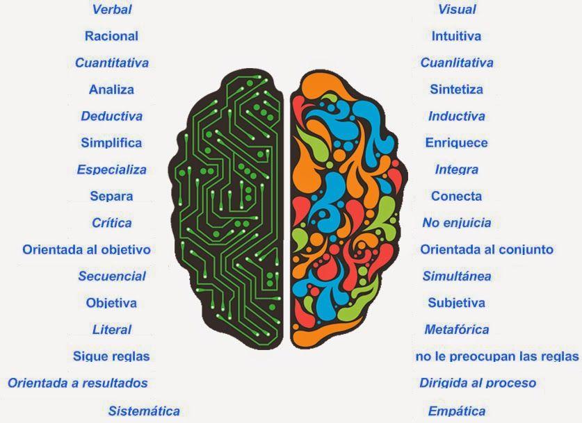 lado izquierdo del cerebro - Buscar con Google | indicadores ...