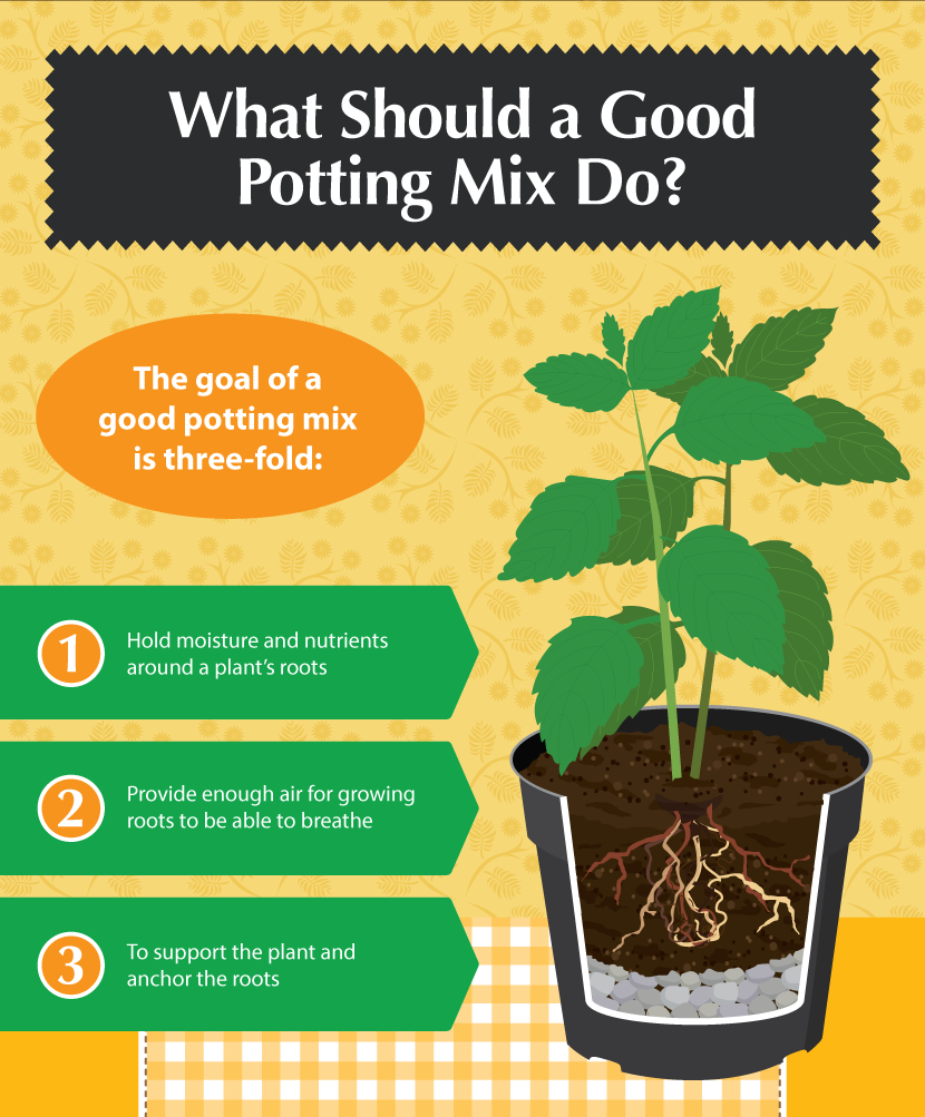 Diy Potting Mixes A Recipe For The Perfect Garden Potting Mix