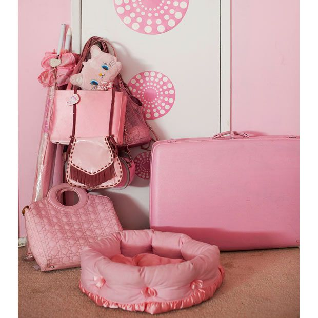 Kitten Kay Sera: The pink lady with the pink dog - Telegraph. I JUST WANT, WANT, WANT!